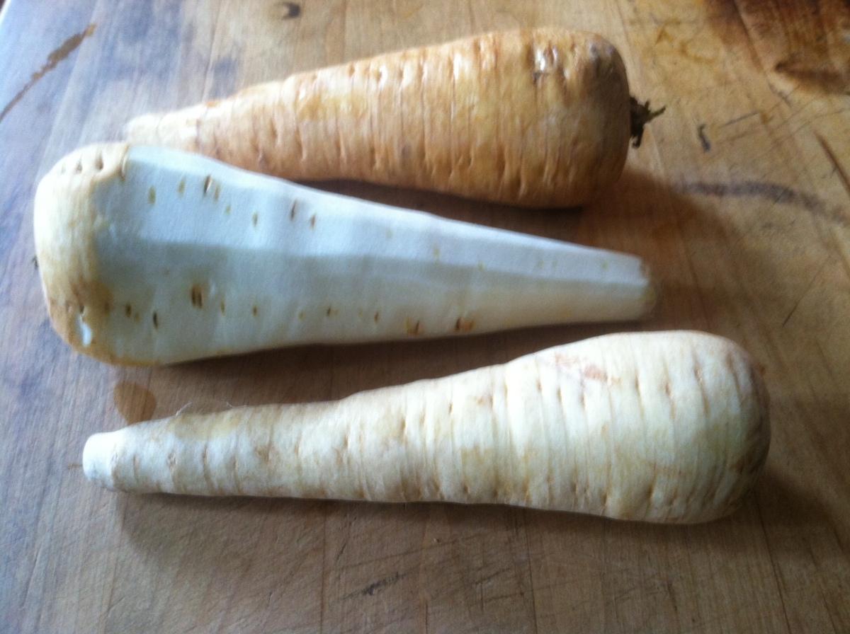 Parsnip: Carrot's ElegantCousin