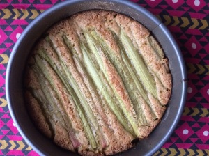 rhubarb cooked 2